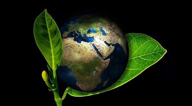 earth on leaf