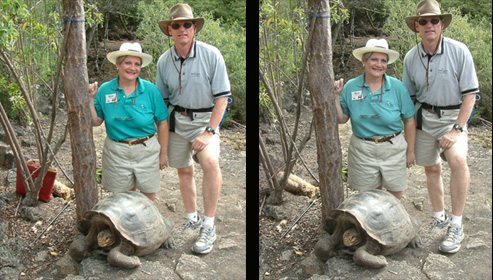 galapagos-tortoise-photoshopped