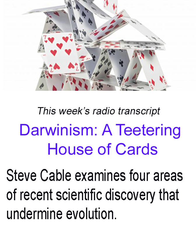 teetering house of cards banner