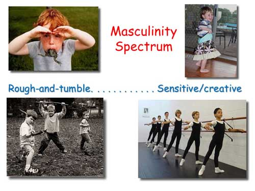 Masculinity Spectrum